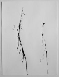 Sans titre. 2015. Encre de Chine et crayon sur papier. 30 x 23 cm / 12 x 9 pouces. Photo: Nélanne Perron-Racine.