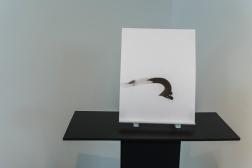 Dessins d'équivalence. 2017. Vue de l'exposition. Carrefour culturel Paul-Médéric, Baie-Saint-Paul. Photo: Louis Laliberté.